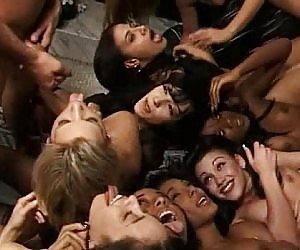 Mature Orgy Videos